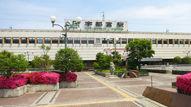 栃木でおすすめのボイトレ教室TOP3!歌が上達するボイストレーニング教室を厳選して紹介